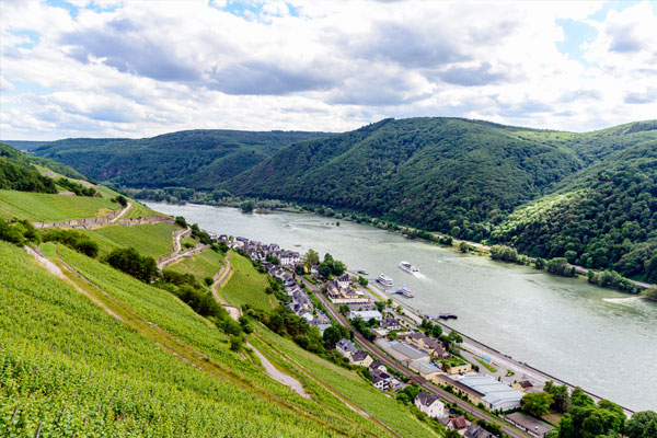 Rhein-Hessen